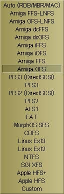 Systemy plików obsługiwane przez FileImageCtrl